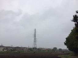 taifu m(1)